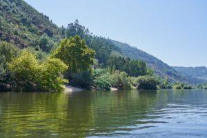 clear water, Mondego River between Penacova & Torres, Portugal