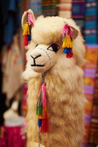 llama toy, bright colours, Guadalajara, Mexico