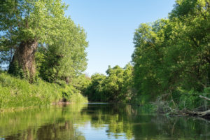 Uckermark, Prenzlau, Fluss Ucker