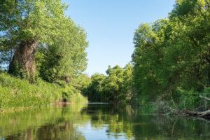 Uckermark, Prenzlau, river Ucker