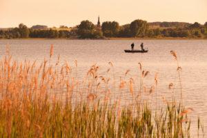 Uckermark, Prenzlau, Unterucker lake, rowing boat, angler
