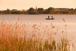 Uckermark, Prenzlau, Unteruckersee, Ruderboot, Angler