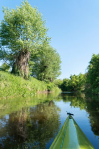 Uckermark, Prenzlau, Fluss Ucker, Paddeltour