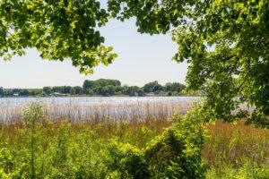Uckermark, Prenzlau, Unterucker lake, lakeside promenade