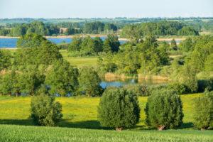Biosphere reserve Schorfheide-Chorin, Oberucker lake, lookout