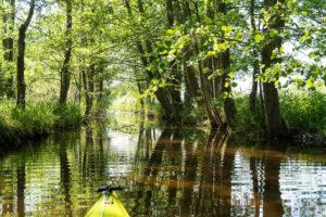 Biosphärenreservat Schorfheide-Chorin, Oberuckersee, Uckerkanal, Paddeltour