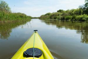 Biosphere reserve Schorfheide-Chorin, Oberucker lake, Ucker canal, Paddle tour