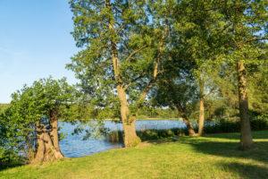 Biosphere reserve Schorfheide-Chorin, Oberucker lake, boat yard, bathing area