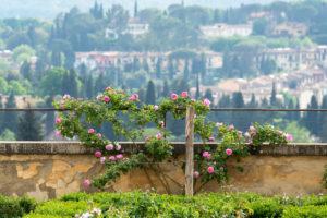 Florence, Giardino di Boboli, view from the porcelain museum towards Chianti