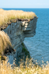 Estonia, Baltic Sea coast, Padilski, Pakri-Pank, cliff, Baltic Glint (limestone)