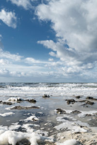 Baltic Sea, Fischland, Darß, coast at storm surge, spray, foam, haemocystis