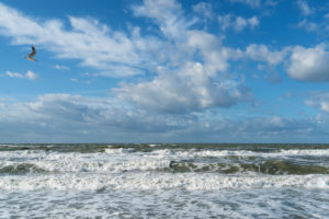 Baltic Sea, Fischland, Darß, storm surge, waves and clouds, seagull