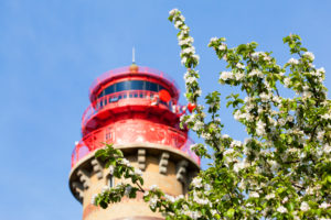 island of Rügen, Cape Arkona, cherry blossoms in front of new lighthouse