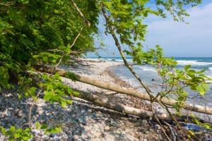island of Rügen, coastal path between Sellin and Binz, path with obstacles