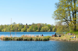 Berlin, Wannsee, Havel-Uferweg in spring, rest at the Moorlake