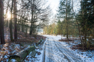 Berlin, Wannsee, Havel-Uferweg im Winter
