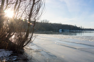 Berlin, Wannsee, view to Schwanenwerder Island, icy shore, sunlight