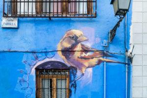 Spain, Granada, Realejo, street art by artist Raul Ruiz, Vogel