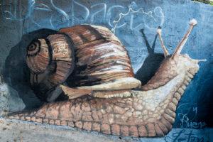 Spain, Granada, Realejo, street art by artist Raul Ruiz, snail