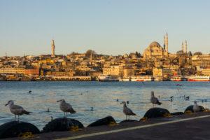 Turkey, Istanbul, Bosporus, Karaköy, morning mood, view to the Suleyman mosque, seagulls