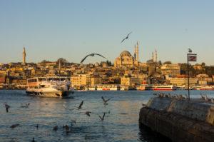 Türkei, Istanbul, Bosporus, Karaköy, Morgenstimmung, Blick zur Süleyman-Moschee, Möwen