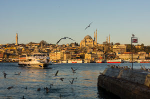 Turkey, Istanbul, Bosporus, Karaköy, morning mood, view to the Suleyman mosque, seagulls