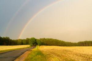 Mecklenburg, Landstraße, Regenbogen