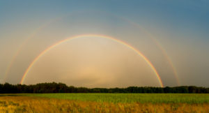 Mecklenburg, country road, field, complete rainbow and side rainbow, panorama