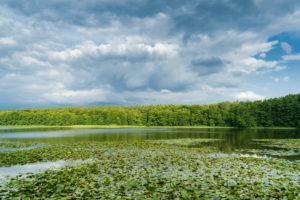 Mecklenburg Lake District, Kagar, idyll at the Kagarsee, water lilies, clouds