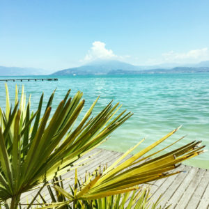 Lake Garda, Province of Trento, Trentino-Alto Adige Region, Italy, lake, water, palm tree