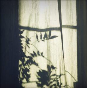 Silhouette, Fenster, Gardine