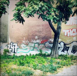 Brandschutzmauer, Baum, Graffiti, Berlin