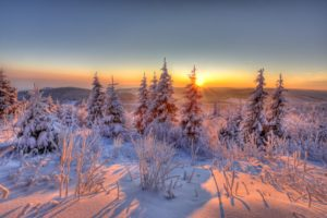 Germany, Thuringia, mountain Kickelhahn, Ilmenau, winter forest, sunrise,