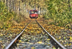 Railroad line, motor coach recedes into the distance, track, fall foliage, trees, Kuhbier, Brandenburg, Germany,