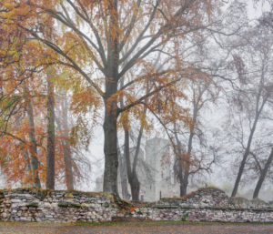 Germany, Thuringia, Gehren, trees, ruin, fog