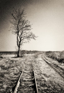 Track ends in the grass, tree, digitally processed, RailArt