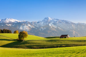 Pre-alpine landscape with hut and tree in the autumn, at Füssen, Ostallgäu, Upper Bavaria, Germany