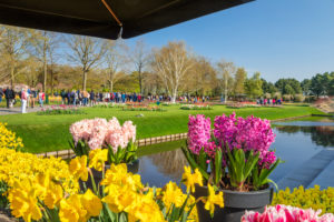 Visitors in Keukenhof, South Holland, Netherlands