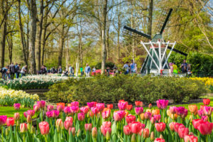 Keukenhof, South Holland, Netherlands