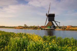 Windmill on the canal, Kinderdijk, South Holland, Netherlands