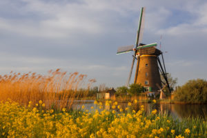 Windmill at sunrise, Kinderdijk, UNESCO World Heritage Site, South Holland, Netherlands