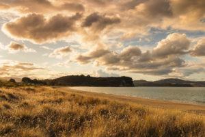 Cooks Beach, Coromandel Peninsula, Waitako, Nordinsel, Neuseeland, Ozeanien