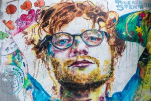 Wandgemälde, Street Art, Dudedin, Otago, Südinsel, Neuseeland, Ozeanien
