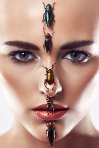 beauty composing picture with beetle, head-on view