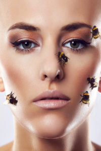 beauty composing picture with bumblebees