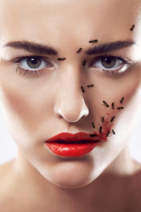 beauty composing picture with ants and eye shadow pigments
