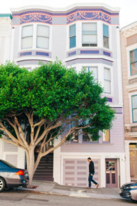 purple house facades with tree
