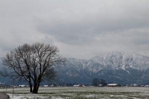 Bergpanorama in Bayern mit Blick auf die Alpen, bewölkt, winterlich kaltes Szenario, menschenleer,
