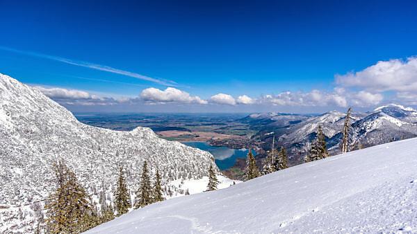 Ausblick vom Herzogstand auf Kochelsee im Winter, bei Kochel, Bayern, Deutschland