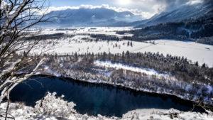 Murnauer Moore with alps in winter, district Garmisch-Partenkirchen, Bavarians, Germany